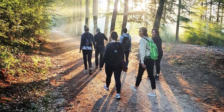 Een groep wandelaars in het bos bij ochtendlicht